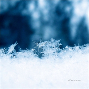 snowflakes_by_all17